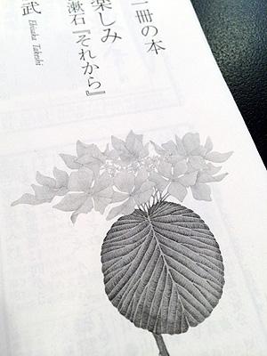 140612_3.jpg