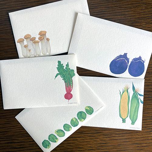 yasai_letter_01.jpg