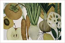 西利:発酵生活/店舗・パッケージ