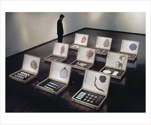 平和紙業/展示用ディスプレイ